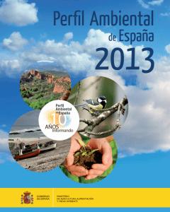Perfil Ambiental 2013