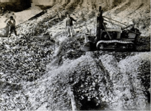1 - La excavadora transporta los envases de vidrio desechados y los vuelca en dos tolvas de 500 toneladas de capacidad.