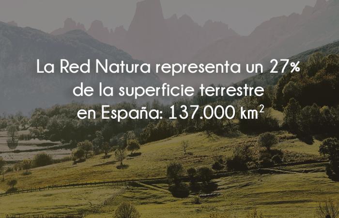 Rednatura2000-Bosque