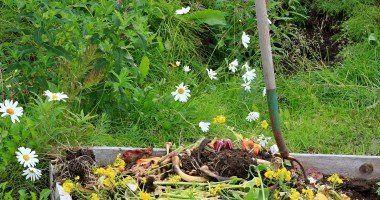 5 seres que reciclan nuestra basura