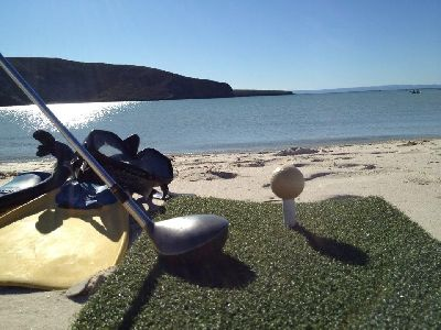 pelota de golf de cascara de langosta 2
