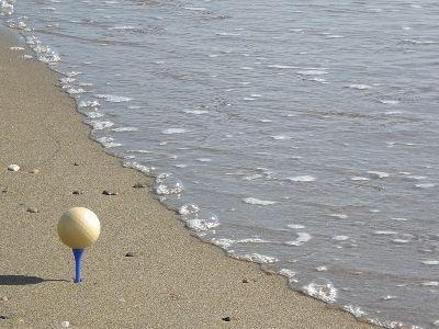 pelota de golf de cascara de langosta