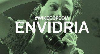 wikecopedia envidria
