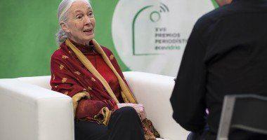 Jane-Goodall-hablando-en-vidrio