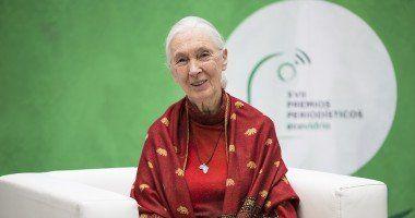 Jane Goodall premios ecovidrio