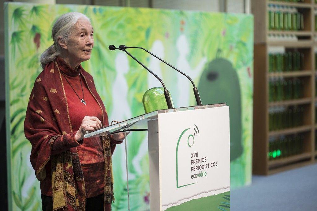 jane goodall premio personalidad ecovidrio