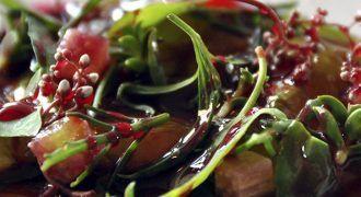 restaurantes sostenibles