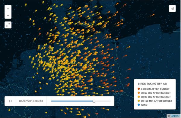 Mapas vuelo migratorio
