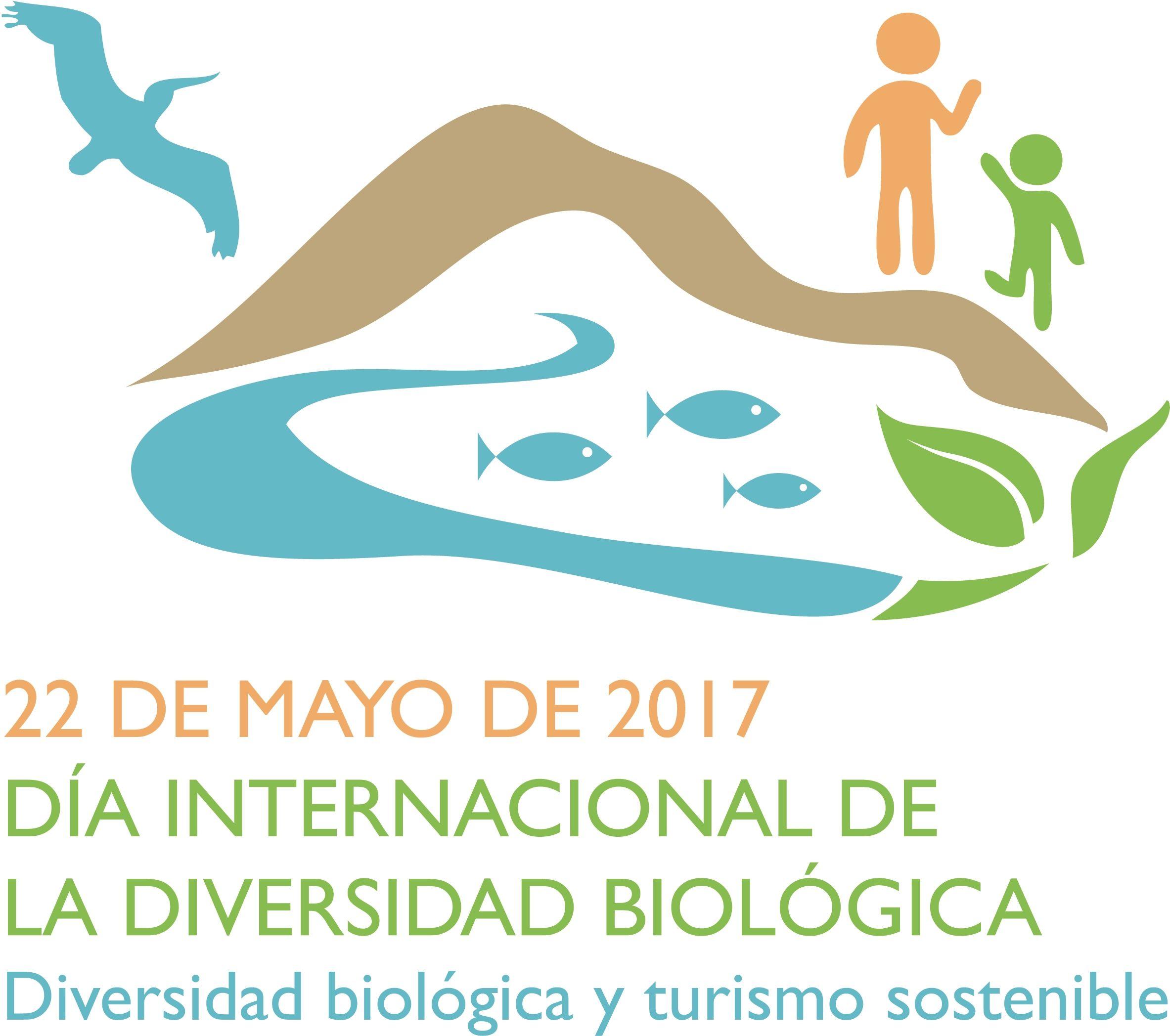 idb-2017-logo-es