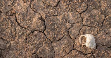 impacto-economico-del-cambio-climatico-Hablando-EnVidrio