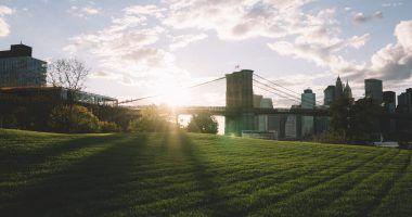 New York - park - ICIM