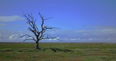 como-nos-afecta-el-cambio-climatico-ECOVIDRIO