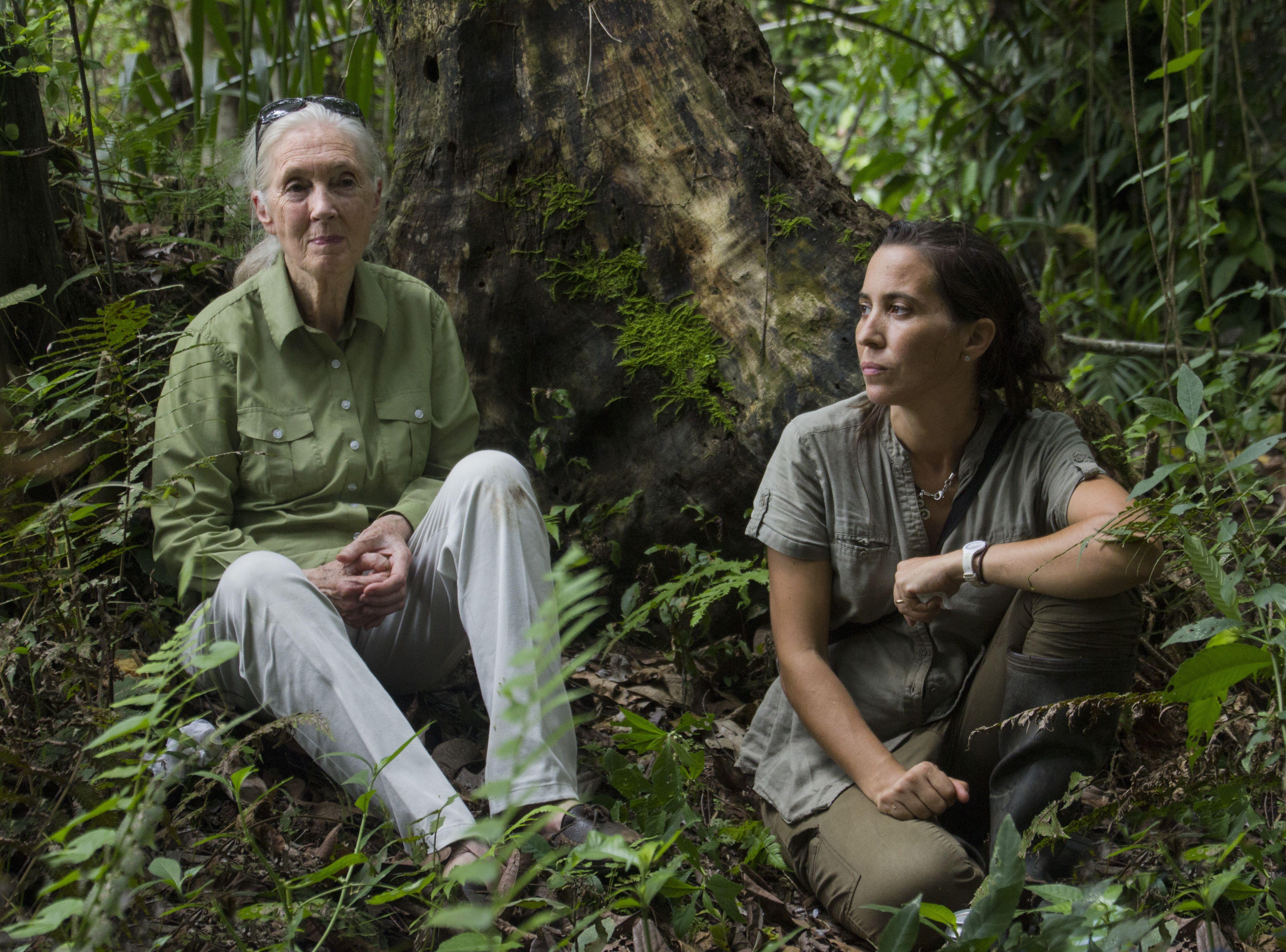 Rebeca y Jane