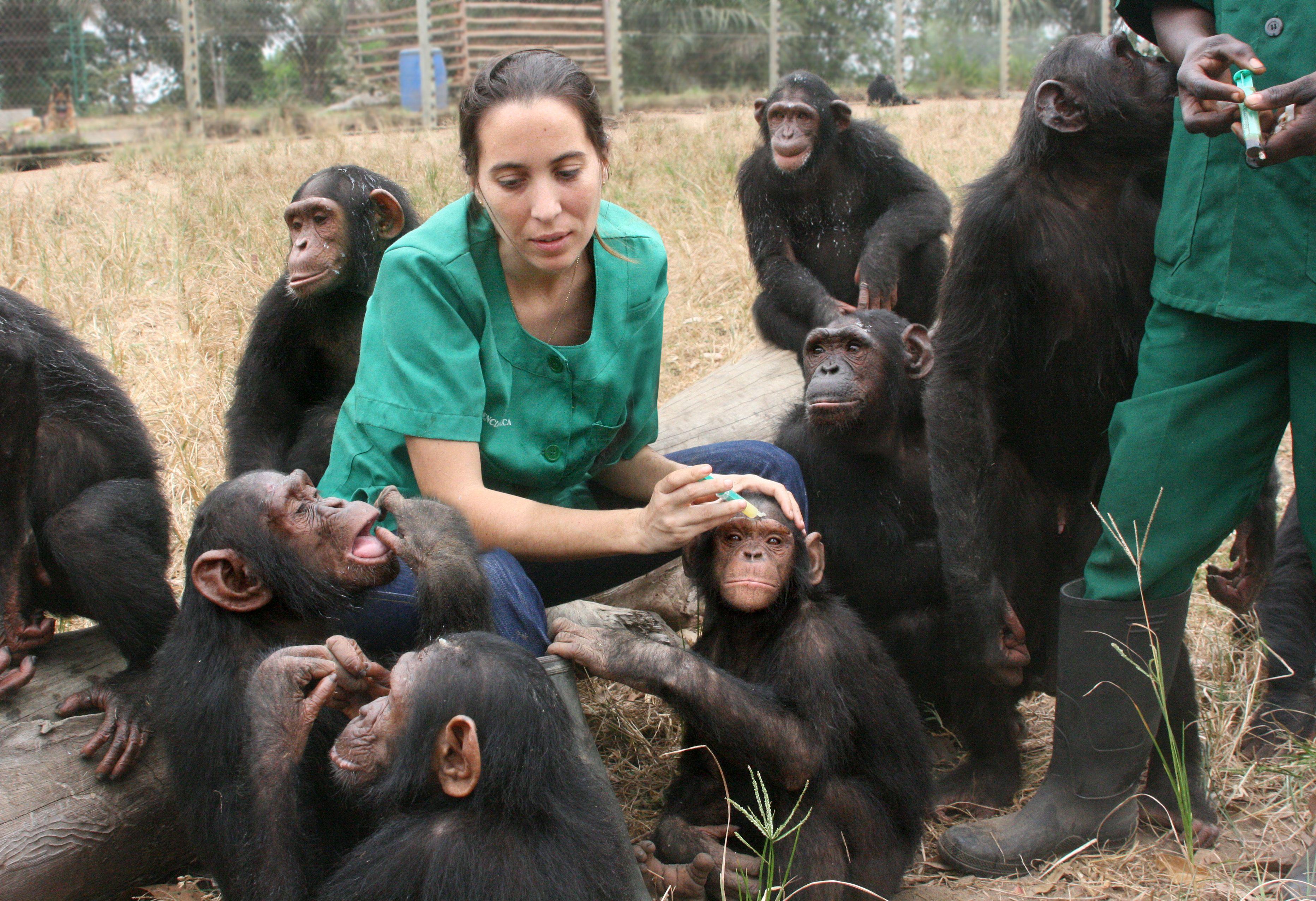 Rebeca curando heridas con crema antibiótica