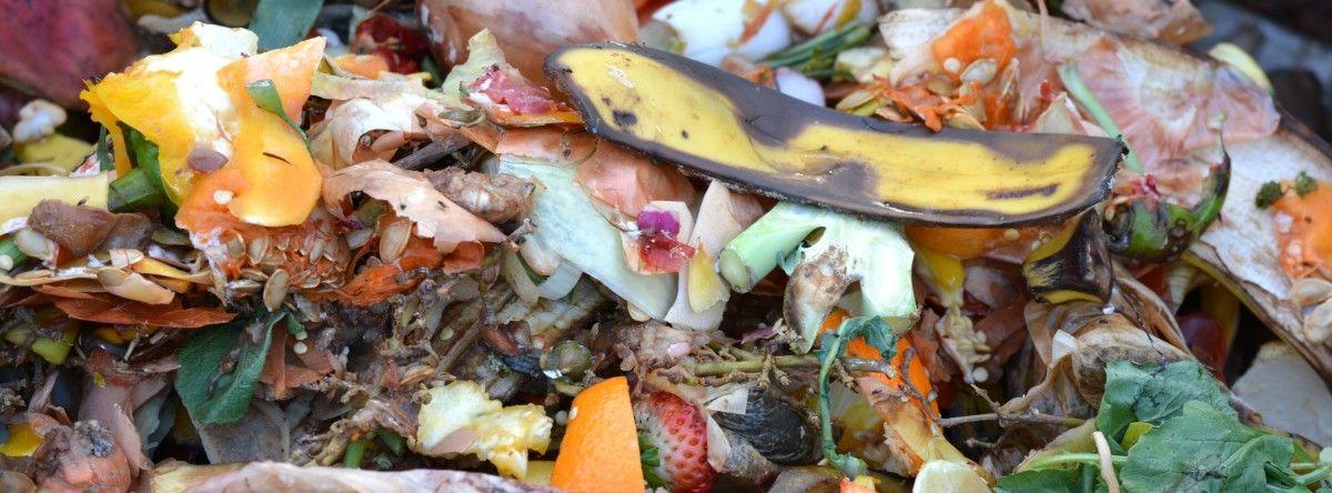 reciclar residuos orgánicos - el compost orgánico