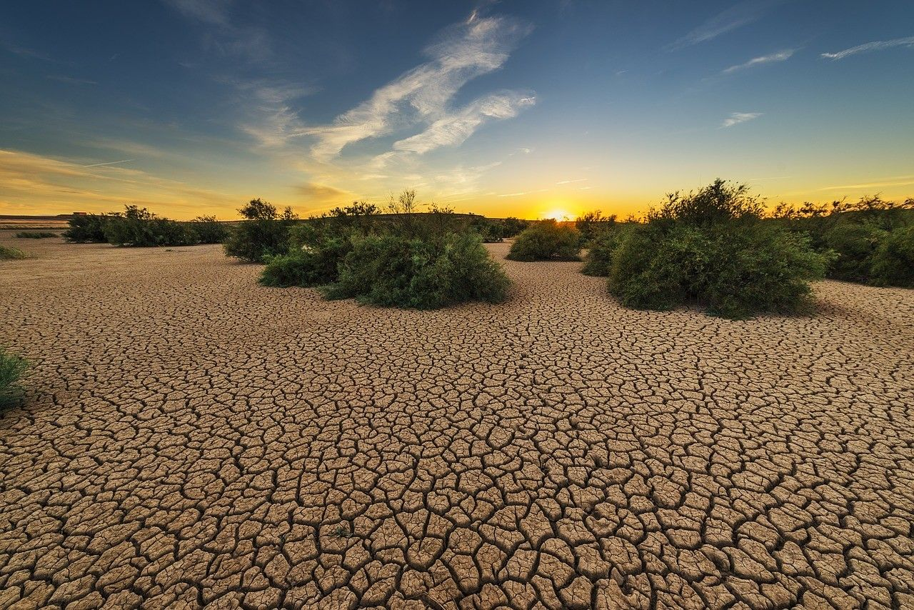 que es la desertificacion