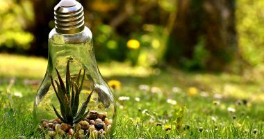 problemas medioambientales - proteccion medioambiente
