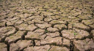 que es la desertificación