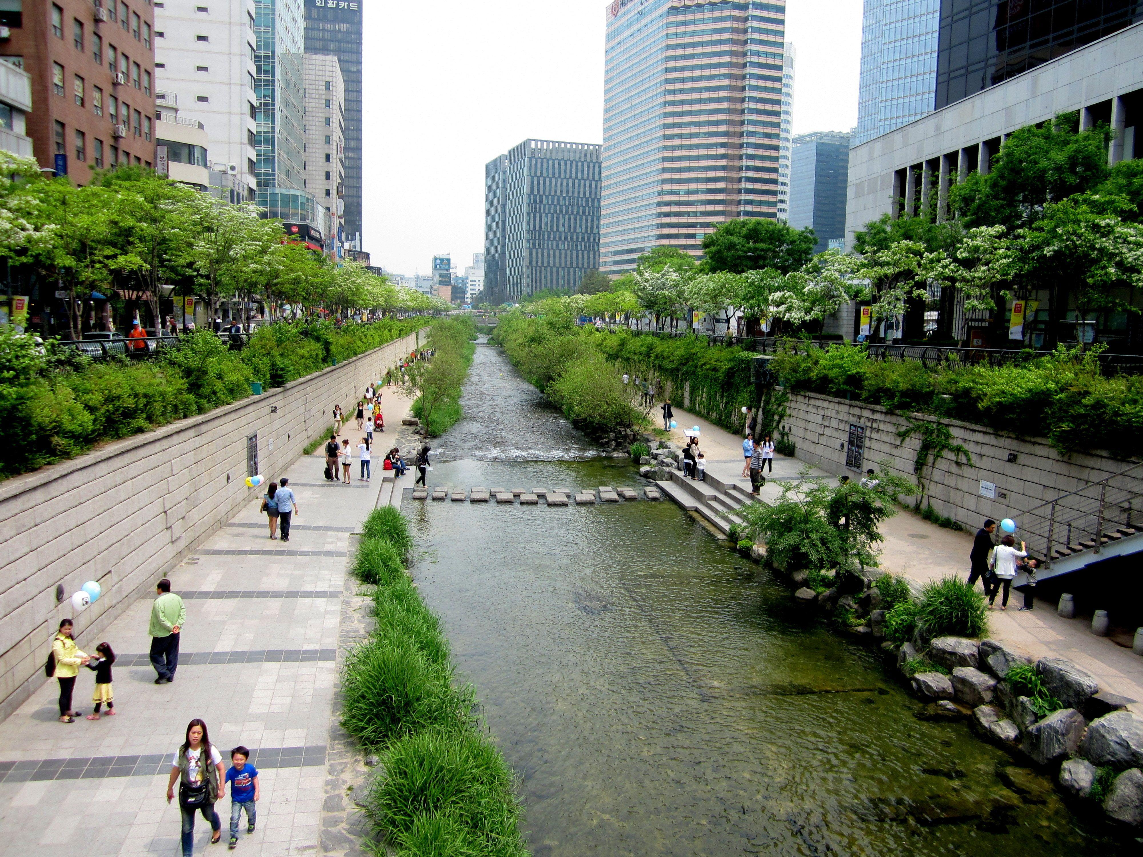 ciudad verde - rio Seul