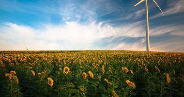 Ventajas de las energías limpias y renovables
