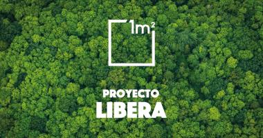 basuraleza - proyecto libera