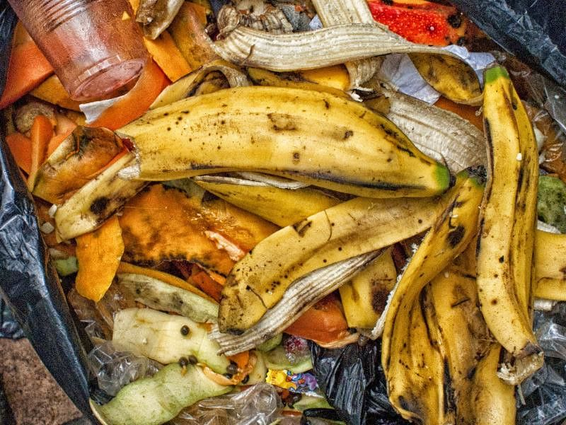 impacto ambiental de la produccion de alimentos