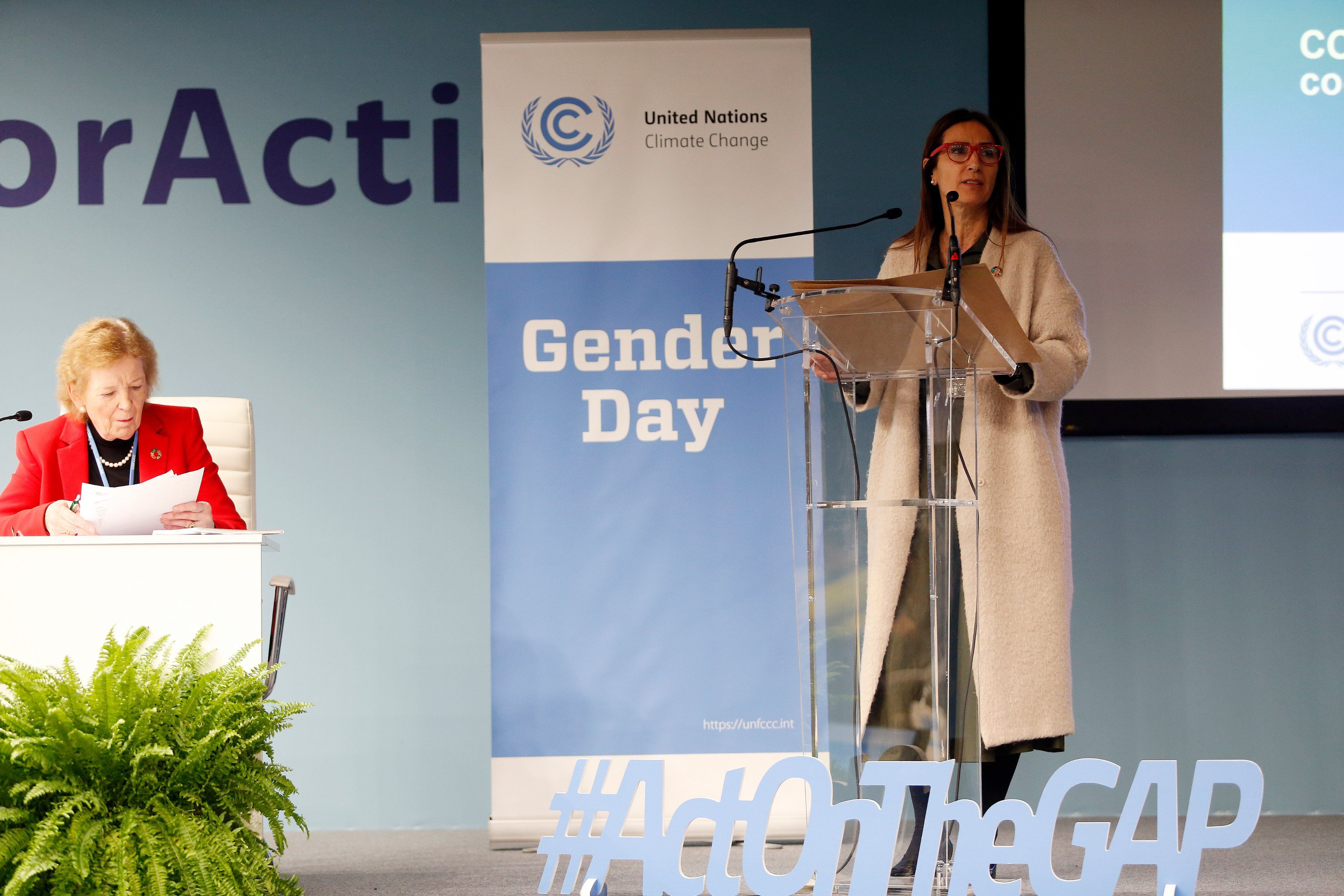 COP25 - plan acción de género