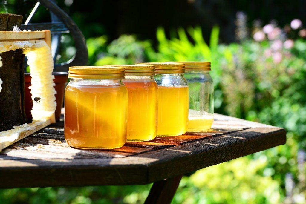 abejas y cambio climatico - miel