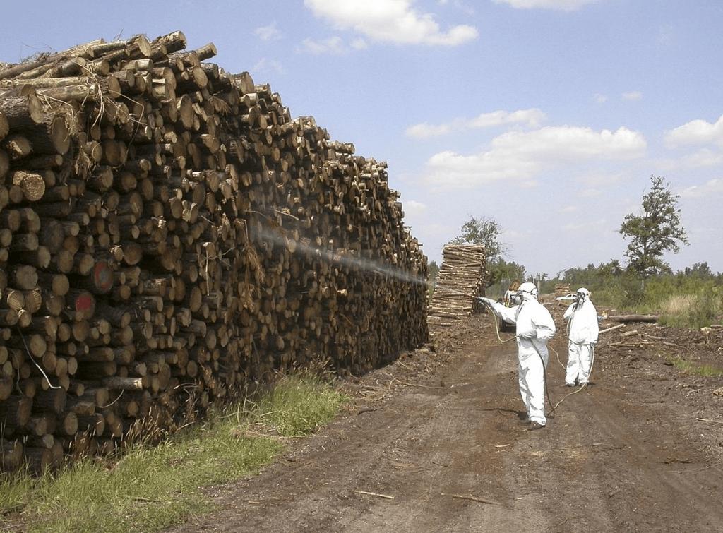 pesticidas y medioambiente