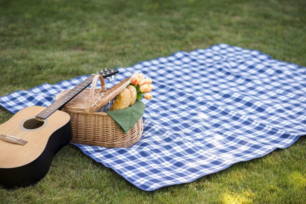 actividades sostenibles en la naturaleza - ir de picnic
