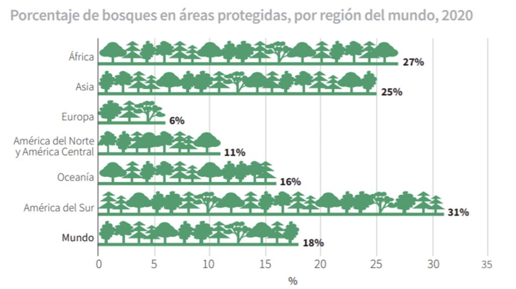 cómo frenar la deforestación - bosques en áreas protegidas