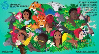 Día de la naturaleza cartel oficial