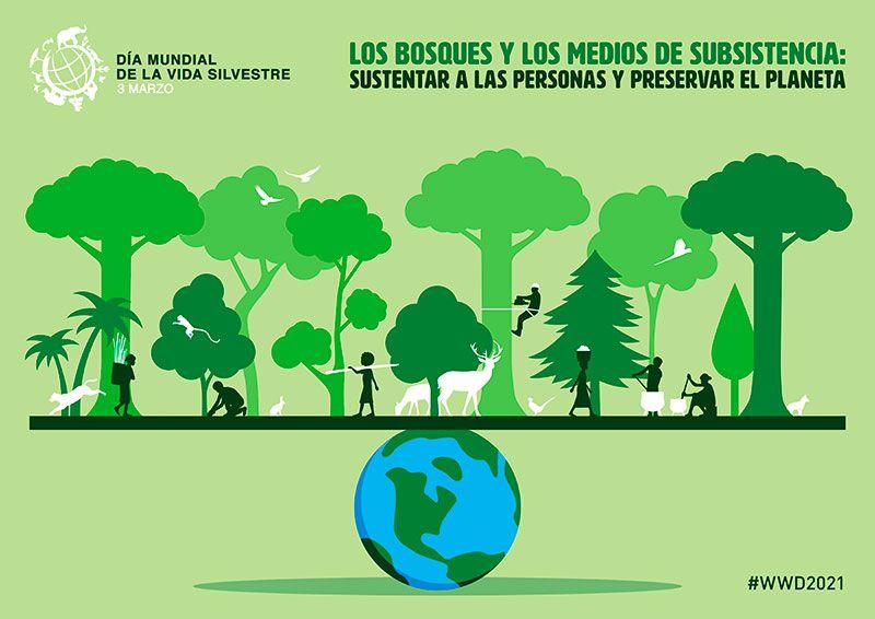 Día de la naturaleza cartel