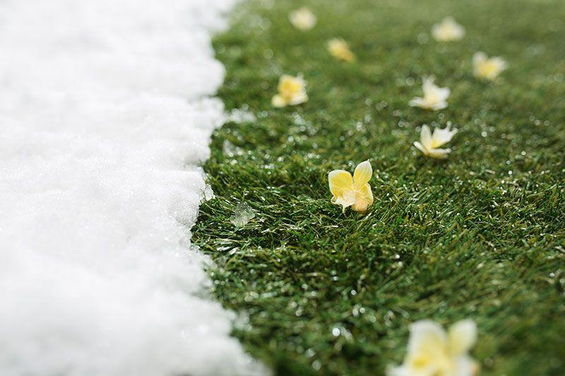 nieve derretida antes de tiempo desventajas de controlar el clima