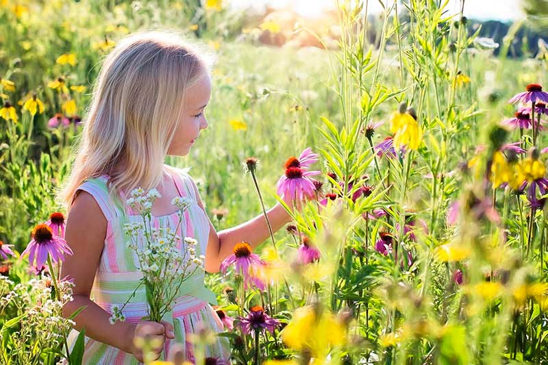 niña cogiendo una flor en plena naturaleza