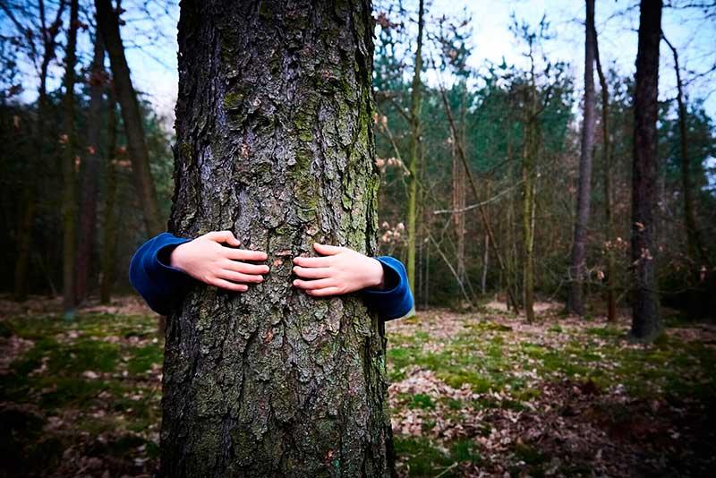 mujer abraza a un árbol en el bosque