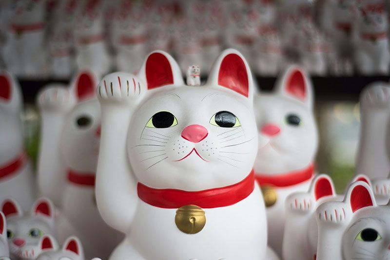 maneki neko gato de la suerte japon